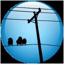 twitter-local