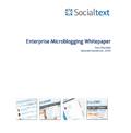 Enterprise Microblogging whitepaper