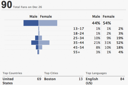 Facebook-Page-Demographics