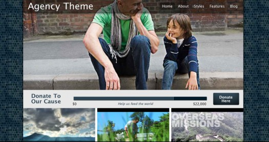 Agency WordPress theme for nonprofits