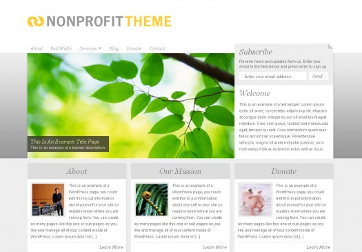 nonprofit-theme