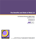 The Benefits and Risks of Web 2.0