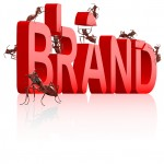 The role of personal branding for nonprofit professionals