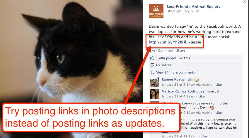 FB-photos