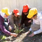 Engaging volunteers through social media